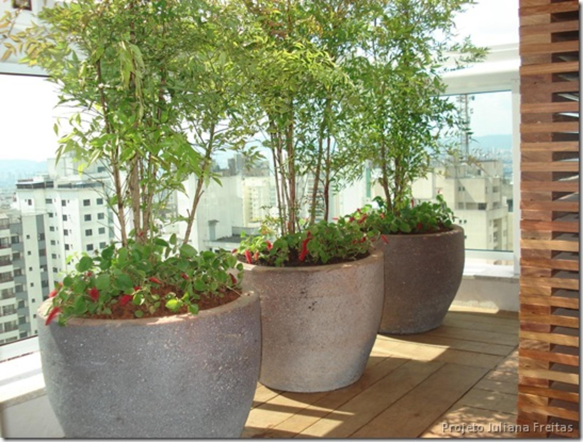 Varandas de apartamentos 2 casa de valentina - Planta exterior resistente ...