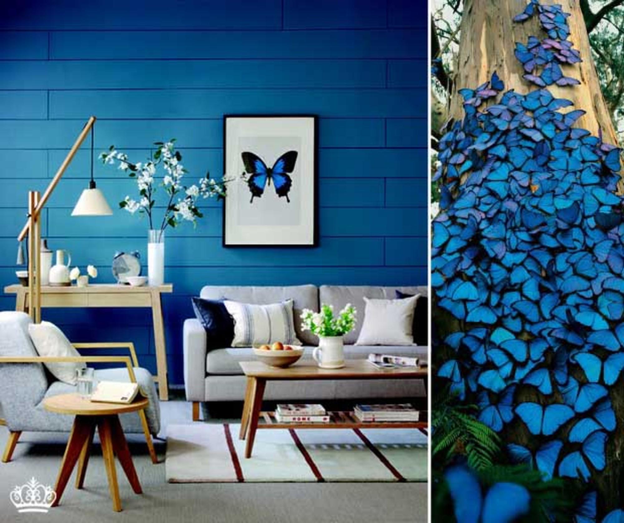 Cor tend ncia azul escuro casa de valentina - Azul turquesa pared ...