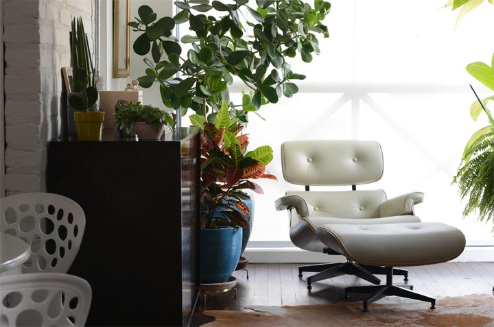 Decoração de detalhes; Vasos de plantas; Casa de Valentina
