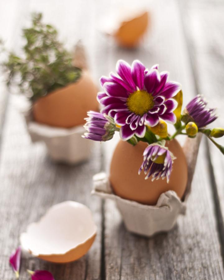 Decoração de: casca de ovo como vaso;  Casa de Valentina