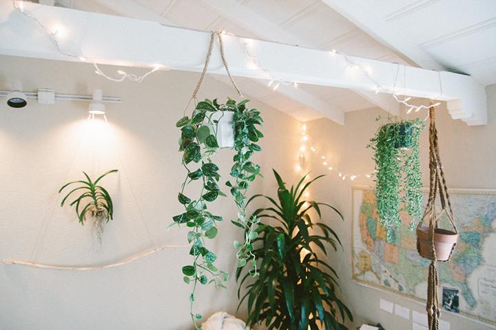 Decoração de: Detalhes; pendente de plantas de corda marrom; Casa de Valentina
